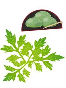 草餅と蓬-min