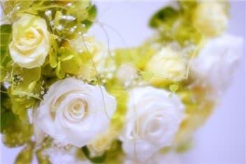 黄色と白のバラ-min