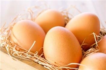 卵②-min