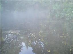 霧-min