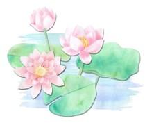 蓮の花④-min