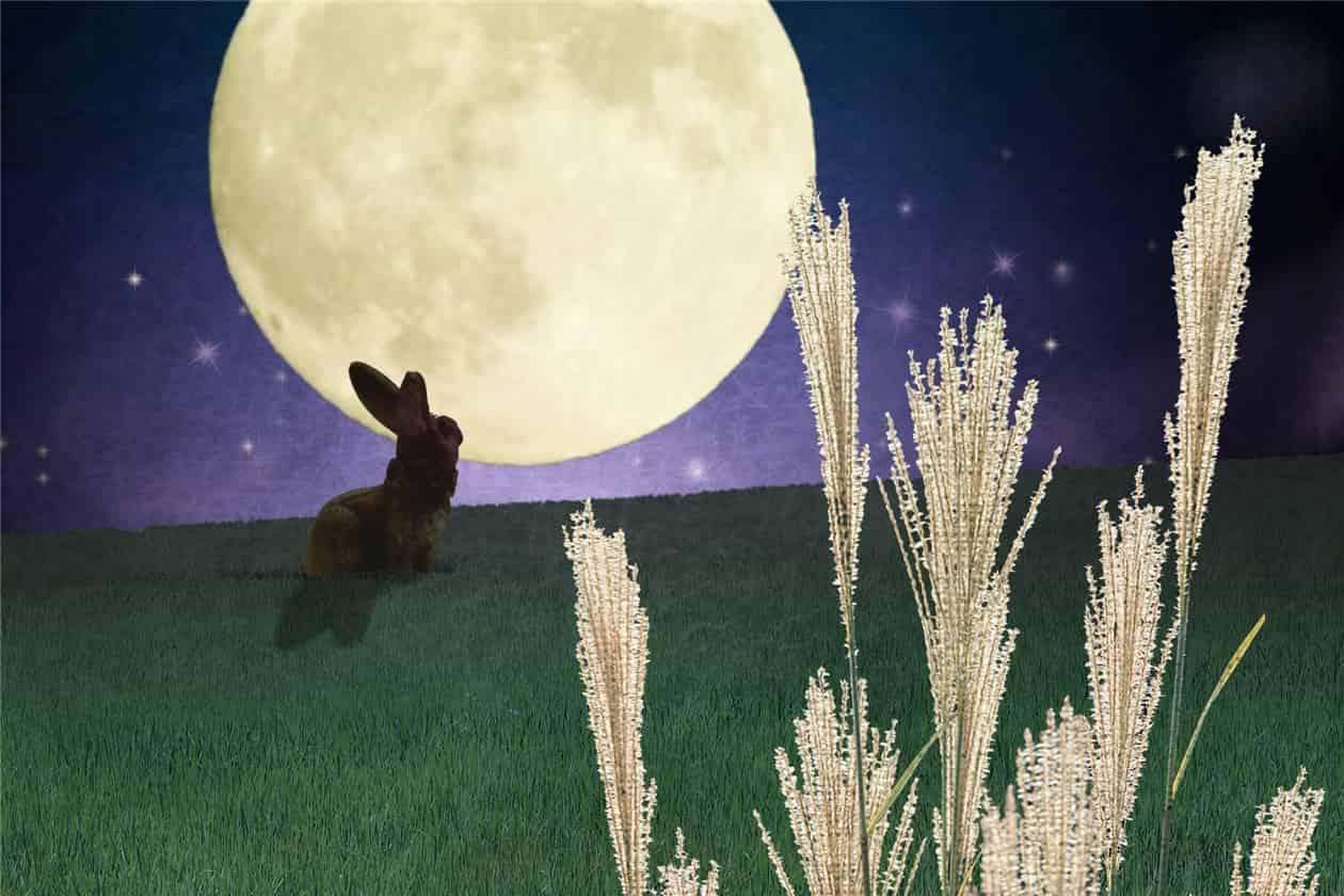 月とウサギとススキ-min