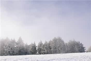 冬➁-min