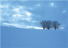 冬至-min