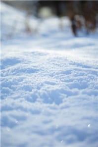 雪2-min