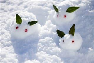 雪うさぎ-min