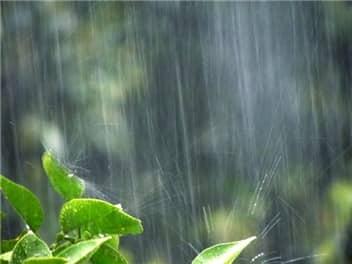 梅雨-min