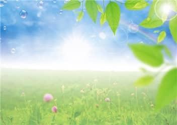 春の虹②-min