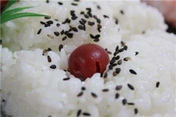 日の丸弁当-min
