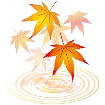 秋④-min
