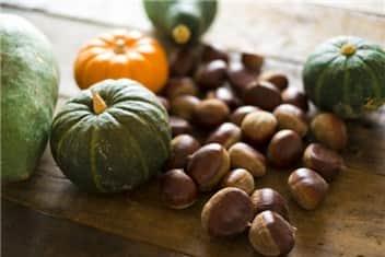 秋の収穫➁-min