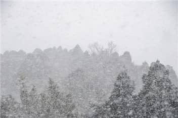 雪の日-min