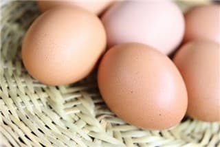 卵-min