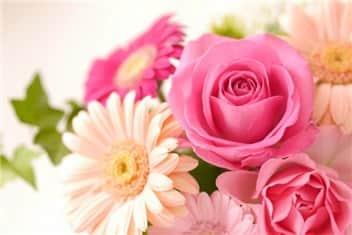 母の日の花-min