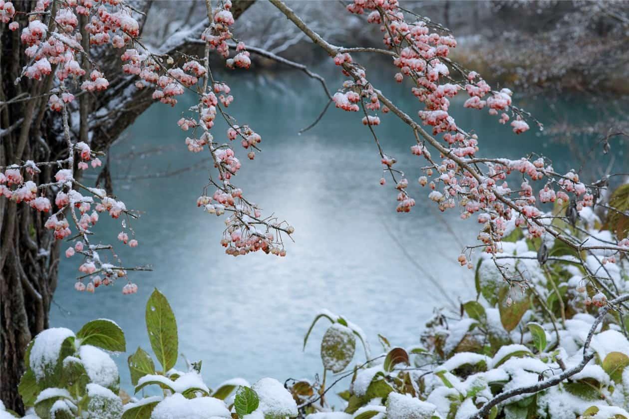 初冬(裏磐梯)-min